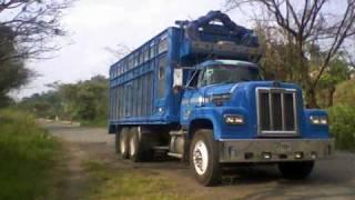 Homenaje DINA camiones 661, 800, 9400, e...