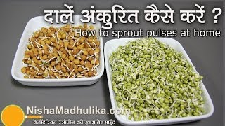 How to Sprout pulses at home ? - Sprouting Seeds, Grain and Pulses
