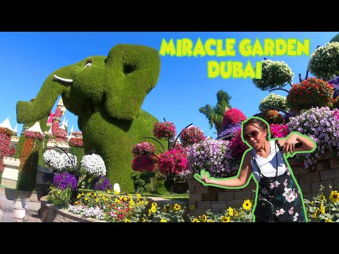 Miracle Garden Dubai New Normal 2020