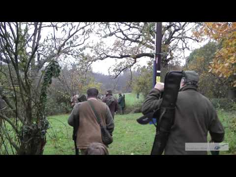 Pheasant and partridge driven game shooting hunting at Glassenbury kent part 2