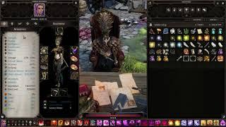 Divinity Original Sin 2 DE | Solo honour mode necromancer build.