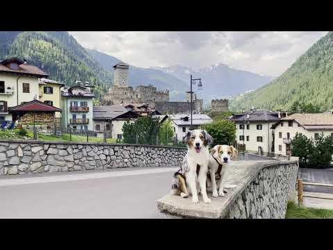 GENESIS ROAD TRIP Nr. 7: @herzenshuendinnen in Italien