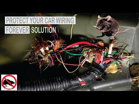 Rats Destroyed Your Car's Wiring ??? | See How To Save Your Car's Wiring From Rats Forever |