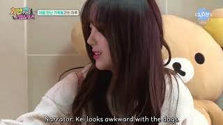 Скачать ENG SUB The Man Who Feeds The Dog 2 Lovelyz EP1