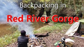 BACKPACKING WITH DOGS in the CLIFTY WILDERNESS | Red River Gorge in 4K