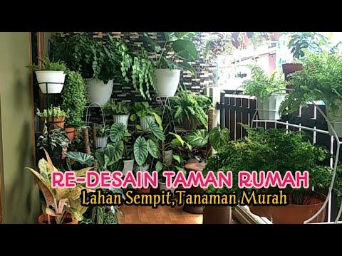 re-desain-taman-rumah-lahan-sempit-tanaman-murah