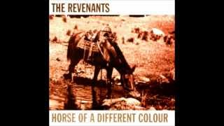 The Revenants - The Drinking Side Of Me