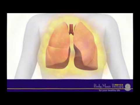 """Music for the Lungs"" - healing meditation music for your lungs & bronchial tubes, music therapy"