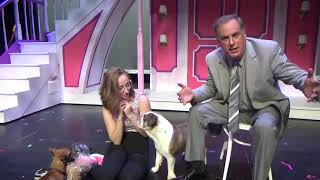 Marty's Corner: Caesar and Stitch (Bruiser and Rufus) ft. Cassidy Ingram