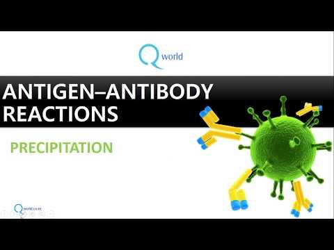 Antigen Antibody reactions Part 2 : Precipitation, Flocculation and Immunodiffusion
