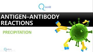 Antigen Antibody reactions Part 2 : Precipitation : Review for NEET-PG, USMLE and MBBS