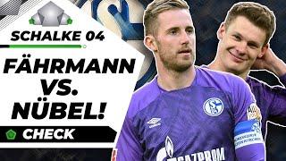 Nübel bei Schalke im Tor: Die richtige Wahl?! |Analyse