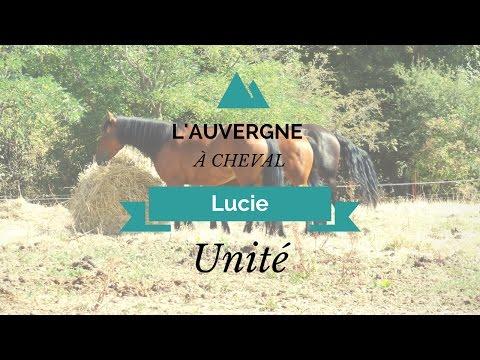 [Balade] l'Auvergne à cheval ♥