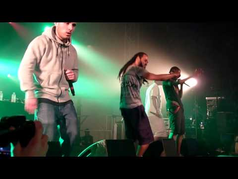 Youtube: Asocial Club live Aucard de Tours 2015