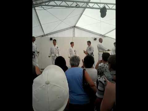 2017 06 24 tae kwon - do bemutató