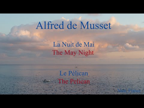 French Poem Le Pélican By A De Musset Slow And Fast Reading