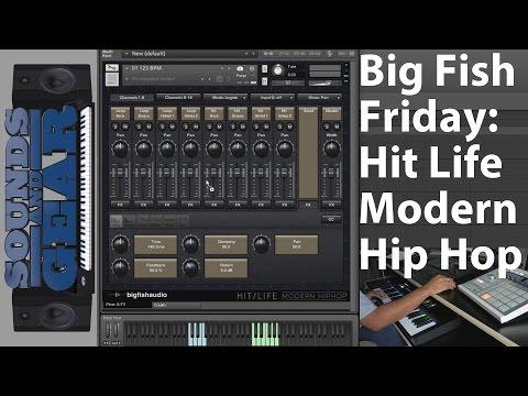 Big Fish Friday: Hit Life - Modern Hip Hop Review - SoundsAnGear.com