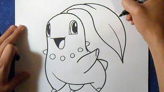 Cómo dibujar a Chikorita 3 - Pokemon   How to draw Chikorita