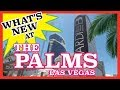 Palms Place Hotel Las Vegas - Studio Suite - YouTube