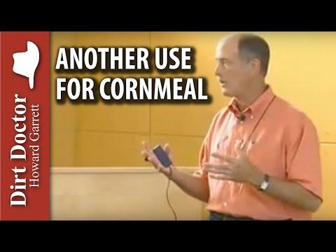 Another Use For Cornmeal - Dirt Doctor, Howard Garrett