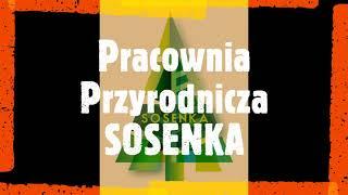 Ekspertyzy dendrologiczne, badania drzew - Pracownia Przyrodnicza SOSENKA - Szczecin, Warszawa