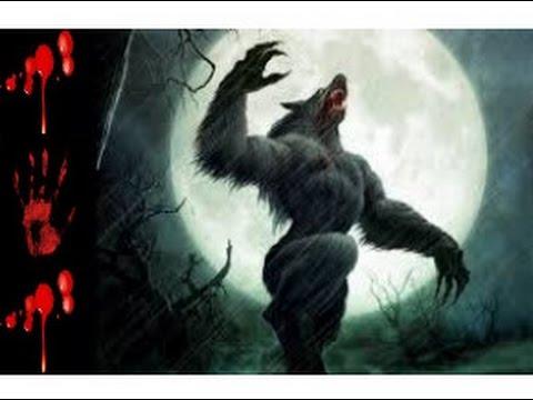 Cam ra cach e loup garou youtube - Cuisiner vesse de loup ...