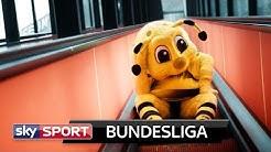 Maskottchen können aufatmen: Endlich wieder Bundesliga!