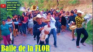 Bodas de la Mixteca Oaxaca; El Baile de la Flor 🍷 🌹