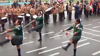 Desfile Escolar SJM 2018 -