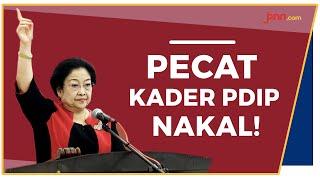 Tidak Ada Ampun Bagi Kader PDIP Nakal - JPNN.com
