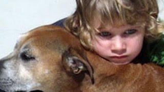 """犬の寿命はなぜ人間よりも短いのか"""" そんな疑問に答えた6歳の男の子がい..."""