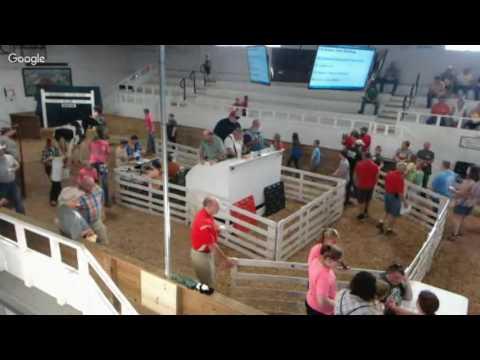 Hardin County Livestock Sale