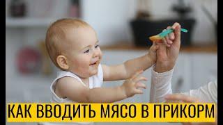 Когда и как вводить мясо в прикорм ребенку
