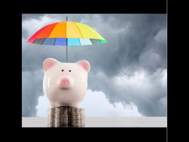Rainy Day Funds Redux
