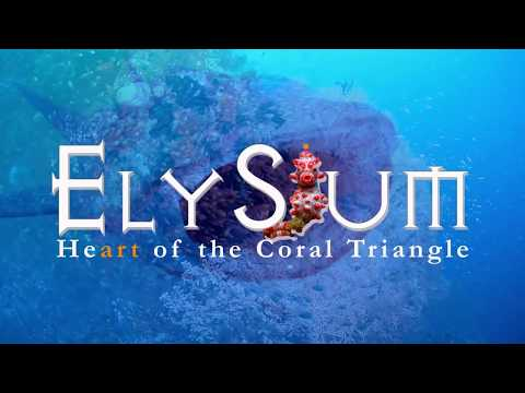 the Elysium Epic Trilogy - Antarctic, Arctic, Coral Triangle - 2010 to 2018