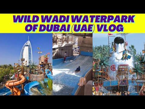 Wild Wadi Waterpark Of Dubai Vlog   Near Burj Al Arab Hotel   CreaSHAANz