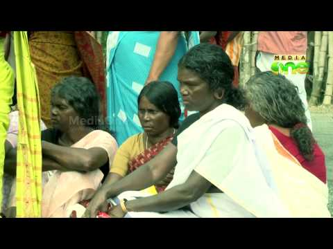 Paniya tribes in Wayanad live in pathetic condition - Truth Inside (37)