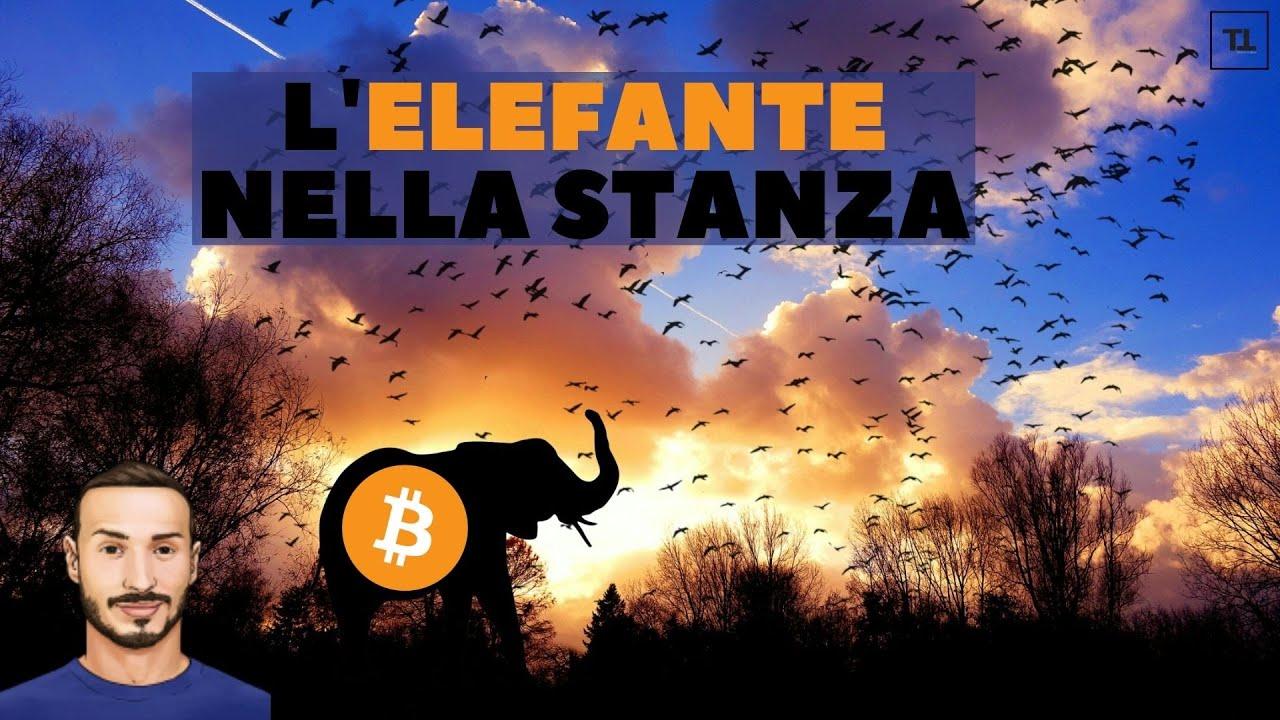 rete di club di bitcoin