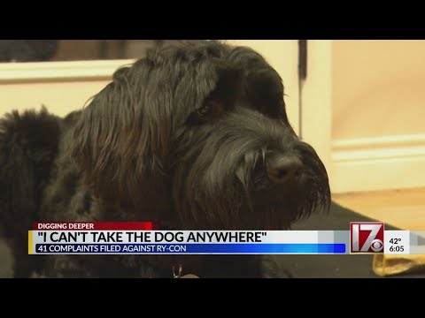 41 families across US file complaints about Apex service dog training firm Ry-Con