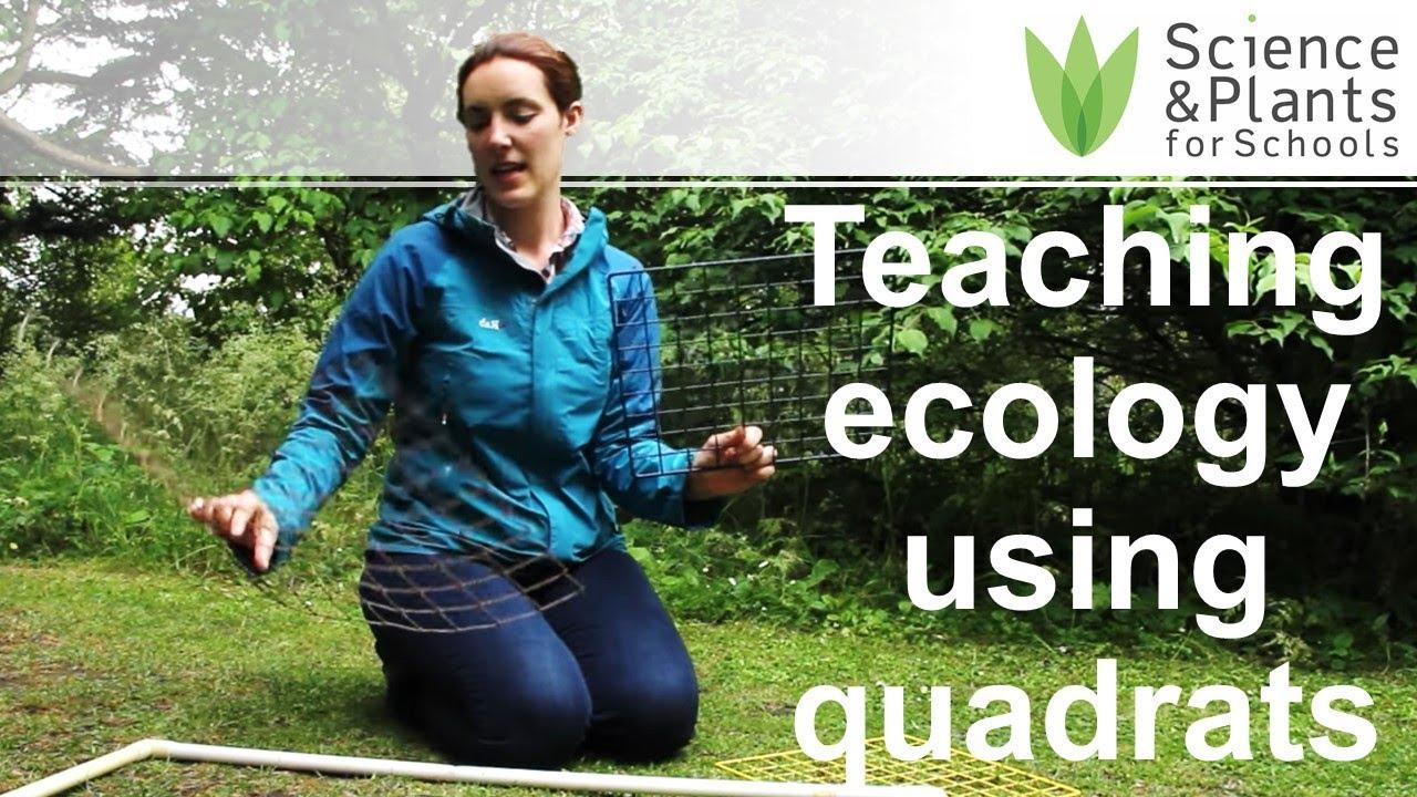 Video Demo Using Quadrats To Study Grassland Ecology