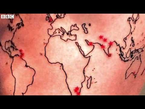 Kevin pietersens map of the world tattoo yt gumiabroncs Images