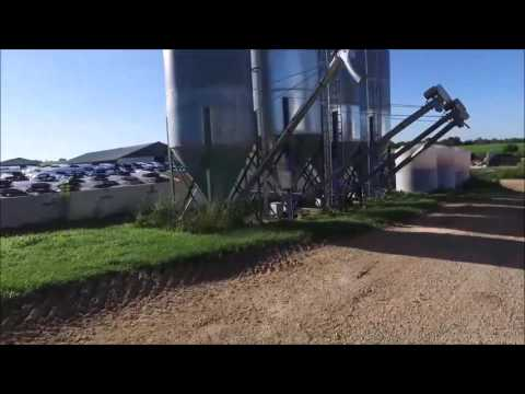 Dairy Farm Elmwood, Wisconsin - Q&Q Farming