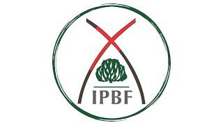 Acompanhe a IPBF no YouTube