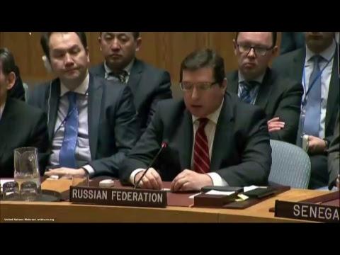 Le Conseil de sécurité de l'ONU se réunit suite aux frappes US en Syrie (Direct du 7.04)