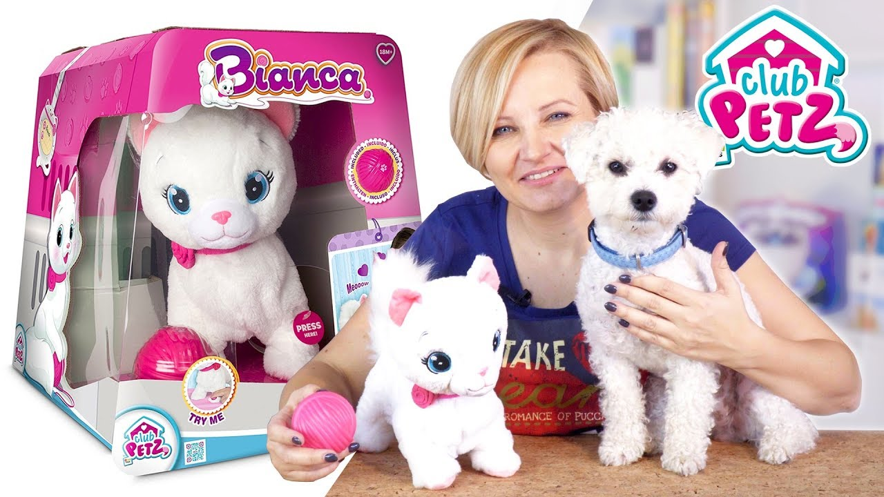 Bianca Interaktywny Kotek Club Petz Tm Toys Youtube