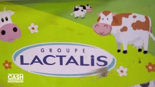 Elise Lucet chez un éleveur Lactalis - Cash investigation (Extrait 1)