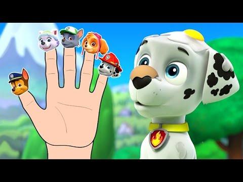 Paw Patrol Finger Family