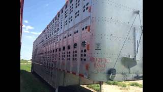 FOR SALE 1994 WILSON Livestock Trailer IN FOLLETT TX 79034