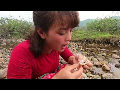 Primitive Life - Ethnic Girls Steal Fish From Traps Of Primitive People Part 1