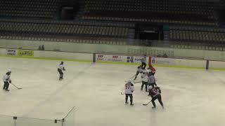 Хоккей ЛНХЛ Парма-Ягуар 25.2.2017 г. 1 пер. Пермь